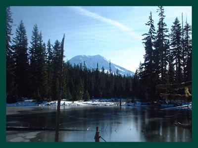 Camping Com Lake Merwin Campers Hideaway Information For
