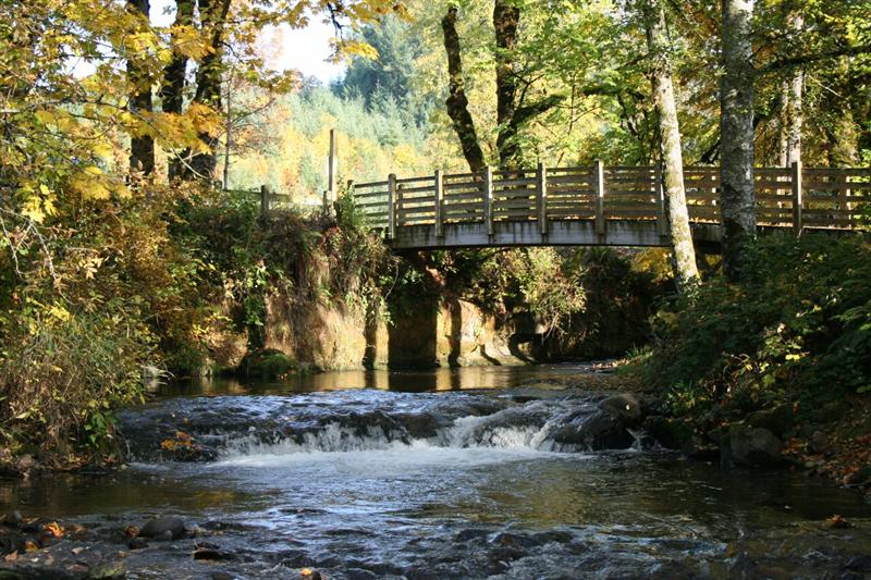 Roaring river county park photo gallery for Roaring river fish hatchery