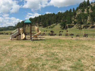 Campsd Com Custer State Park Make Online Reservations