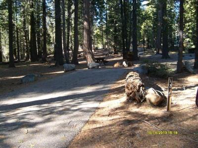 Camping Com Lodgepole Campground Information For Camping