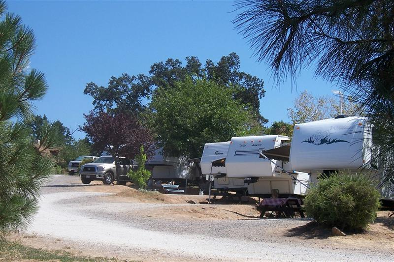 Camping Com Angels Camp Rv And Camping Resort Photo Gallery