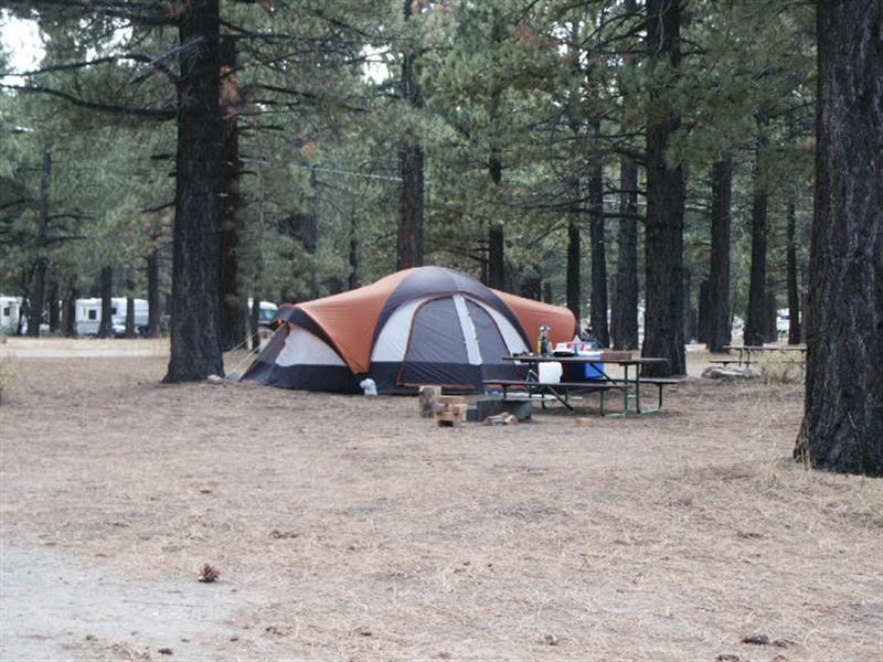 Camping Com Mammoth Mountain Rv Park Photo Gallery