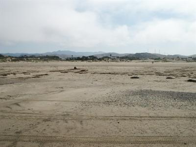 Camping Com Morro Dunes Travel Trailer Park And Resort