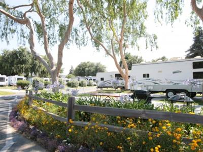 Guestrated Com Reviews For Flying Flags Rv Resort