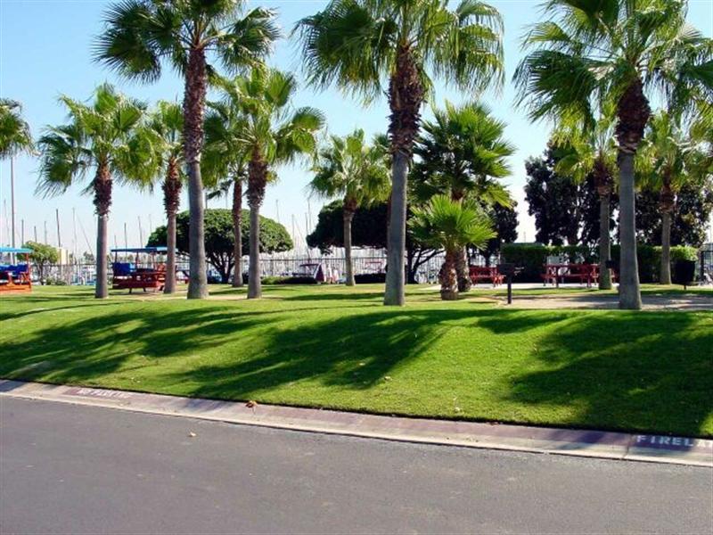Chula Vista Rv Resort Special: Chula Vista RV Resort And Marina Photo Gallery